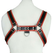 Real-Leather-Harness-H6-3